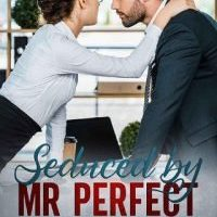 Seduced by Mr Perfect by Dee James